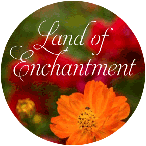 Land of Enchantment Package
