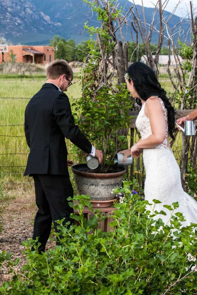 A couple adds soil to a plant during their wedding