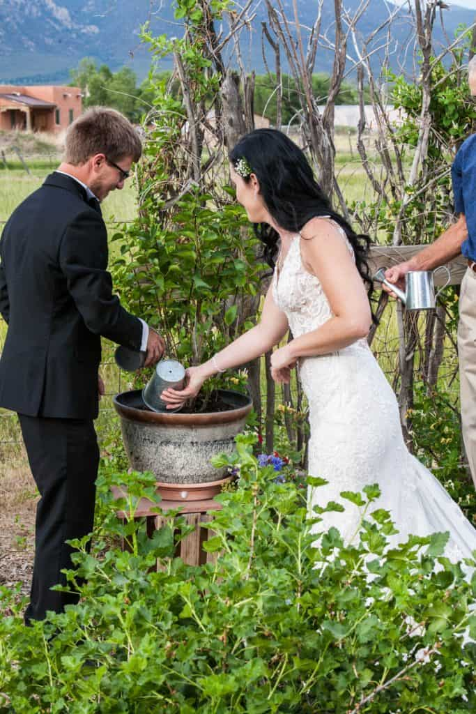 A Plant Nuturing ceremony at a wedding
